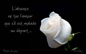 L'Absence Ne Tue l'Amour...