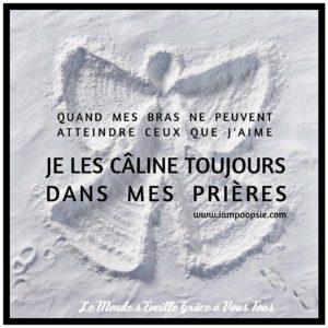 Toujours Câliner...