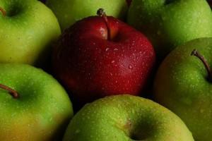 Les Pommes Françaises Empoisonnées