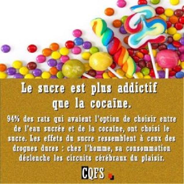 Le Sucre Est Plus Addictif Que La Cocaïne