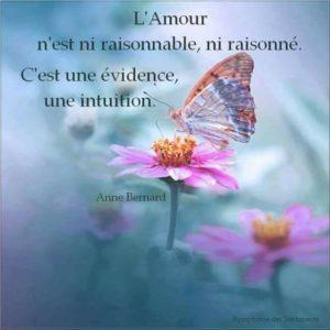 L'Amour n'Est Ni Raisonnable, Ni Raisonné...
