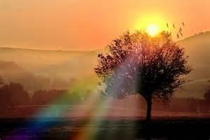 Le Début de la Journée Peut-Être le Début d'Une Nouvelle Vie