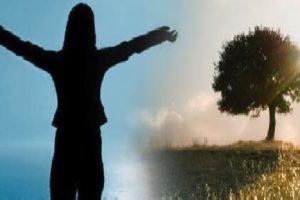 Être Dans l'Action C'Est Vivre Pleinement