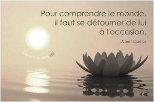Pour Comprendre Le Monde...