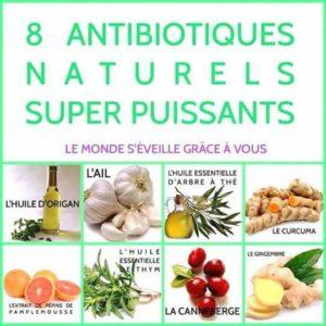 8 Antibiotiques Naturels