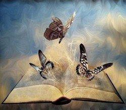 Papillons-livre.jpg