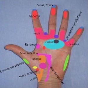 Reflexologie-des-mains.jpg