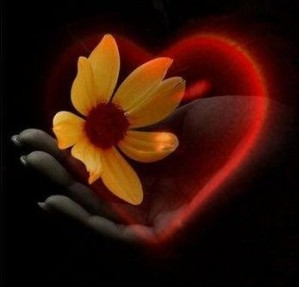 Fleur-amitie.jpg