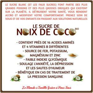Le Sucre de Noix de Coco