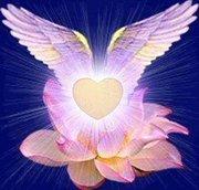 L'Envol du Coeur...