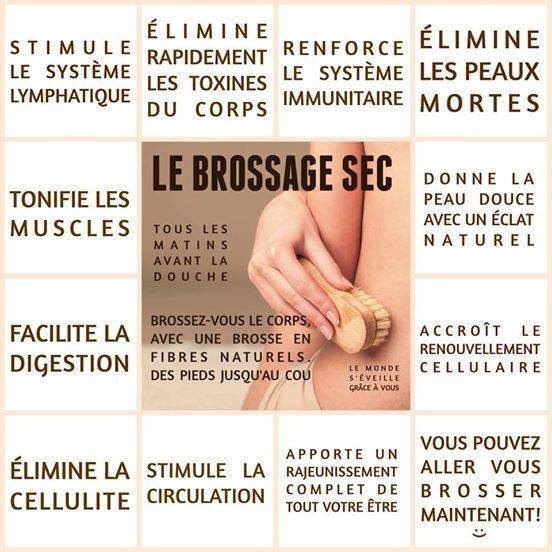 Le Brossage Sec