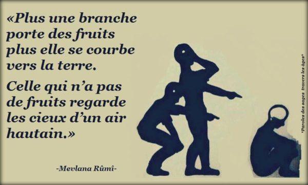 Plus Une Branche Porte de Fruits...