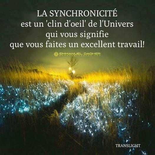 La Synchronicité