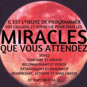 Les Miracles Que Vous Attendez...
