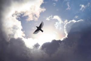 L'Attribut de Notre Nature Céleste