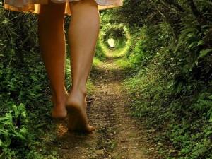 La Longueur du Chemin