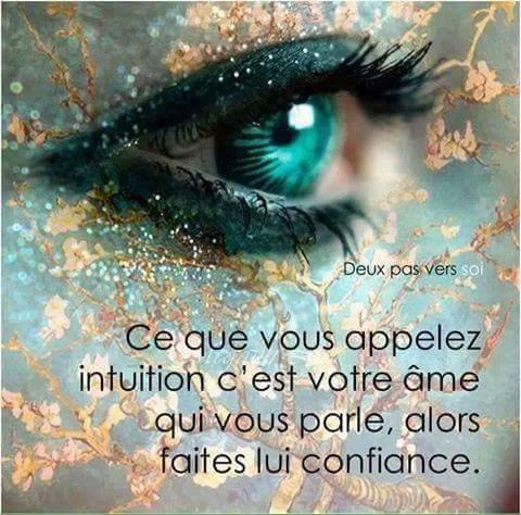 Ce Que Vous Appelez Intuition...