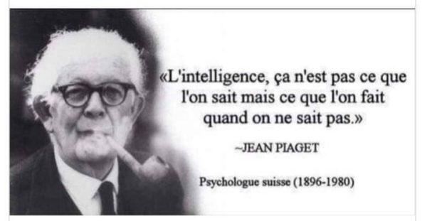 L'Intelligence...