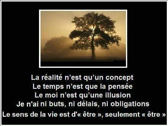 Le Sens de la Vie....