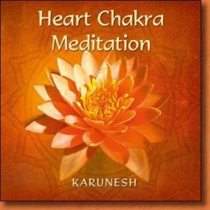 Heart  - Karunesh