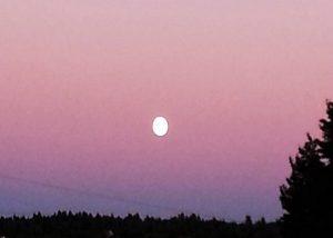 Tendre Lune, l'Une Etendue Près de l'Autre...