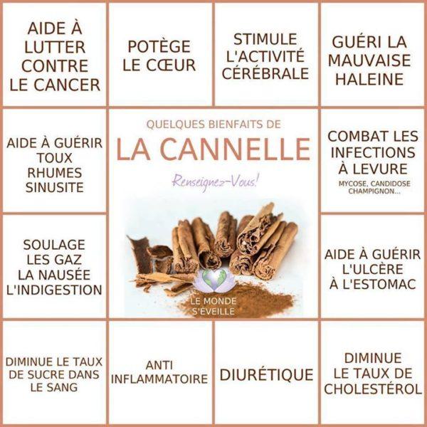 la-cannelle