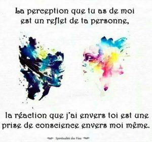 La Perception Que Tu As De Moi...