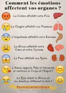 Comment Les Emotions Affectent Vos Organes ?