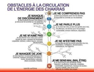 Obstacles à la Circulation de l'Energie des Chakras