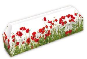 Un Cercueil en Carton Personnalisable