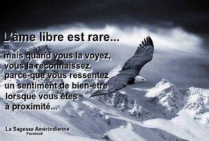 L'Âme Libre Est Rare...
