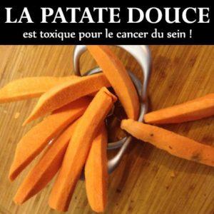 La Patate Douce Toxique Pour le Cancer