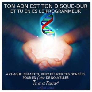 Ton ADN Est Ton Disque Dur