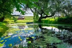 Votre Etat Naturel, Un Etat de Santé et de Bien-Être