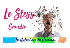 Le Stress - La Métaphore du Homard