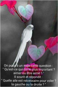 Quel Est Le Plus Important Aimer ou Être Aimé ?
