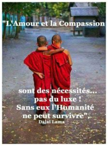 L'Amour et la Compassion, des Nécessités