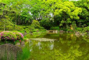 Planter Le Jardin de Son Âme