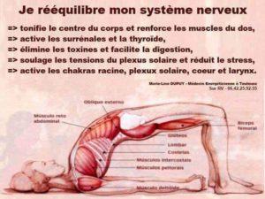 Je Rééquilibre Mon Système Nerveux