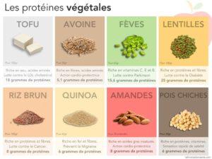 Les Protéïnes Végétales