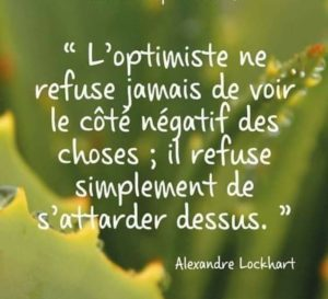 L'Optimiste Ne Réfute Pas Le Côté Négatif