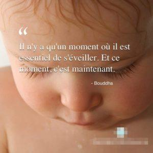 Le Moment Essentiel A L'Eveil