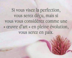 Si Vous Visez La Perfection...