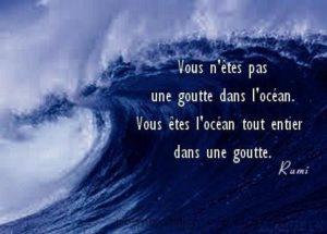 Vous N'Êtes Pas Une Goutte Dans l'Océan