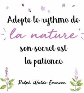 Adopte Le Rythme De La Nature