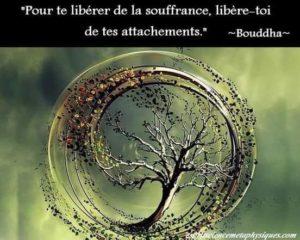 Pour Te Libérer De Ta Souffrance